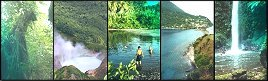 Images of Dominica - Rainforest, Boiling Lake, Macoucherie River, Scotts Head, Pagayer Falls