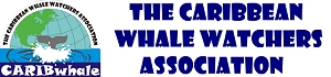 protecting cetaceans and