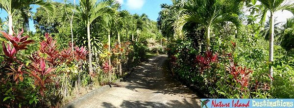 Coffee River Cottages - garden path