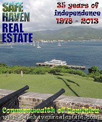 SAFEHAVEN REAL ESTATE - 2013 property magazine, cover photo by Dominic Lees